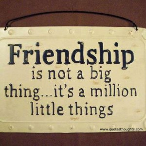 Friendship is not a big thing... it's a million little things